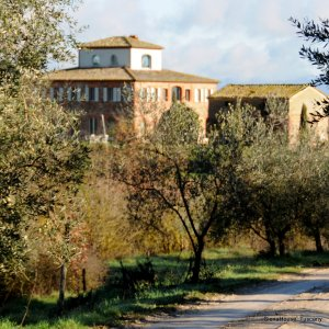 image of Tuscan Country house Siena House viewed from Pietrabianca white road walk