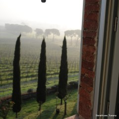 Image of the view from the bathroom of the 'Perugia' room.