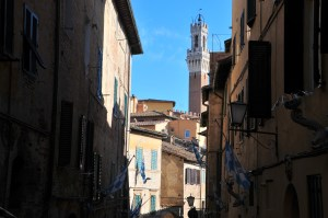 image showing the tower in the piazza il campo in siena as seen high above the roof line of the side streets