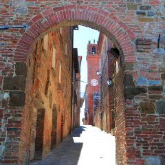 Torrita di Siena, Grappa Town
