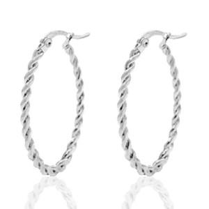 Roestvrij stalen (RVS) Stainless steel oorbellen creolen oval twist zilver