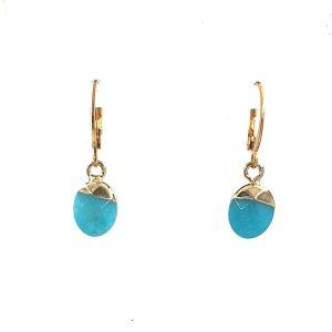 RVS oorhanger met natuursteen druppel hanger van Turquoise Jade