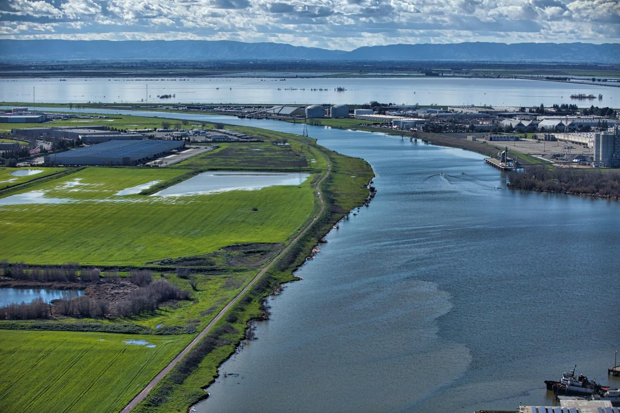 Support The Plan To End An Ecological Crisis In The Sf Bay