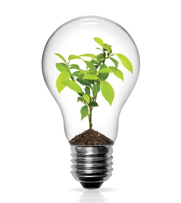 Replacing Light Bulbs