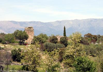 Vista de Almendral de la Cañada