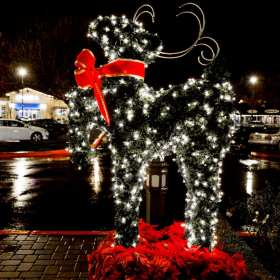 lite reindeer decor