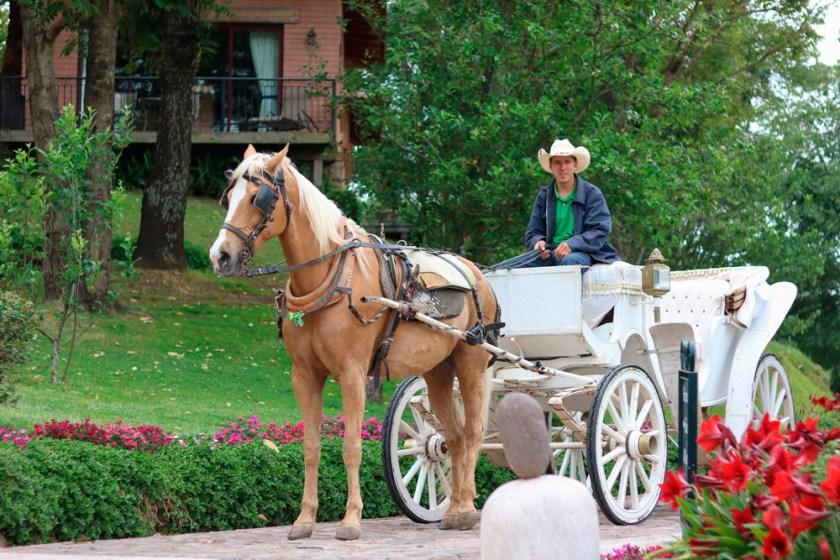 Paseos en Carruaje, Actividad Recreativa en Sierra Lago Resort