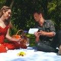 Historia del Pícnic