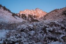 Mt. Locke, 6am