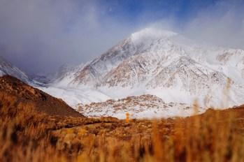 Mt. Tom March 2, mid-storm. photo: Kyle Queener
