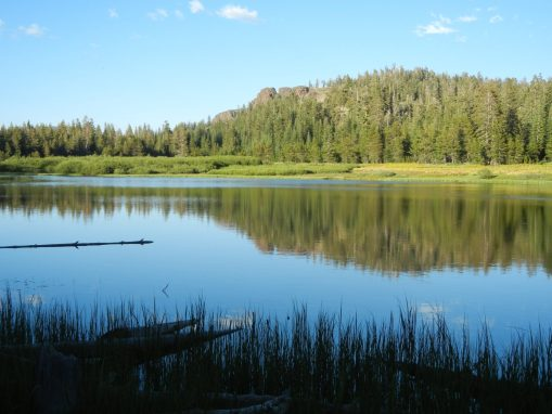 Mudd Lake Recreational Area