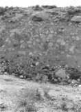 1872quake.jpg