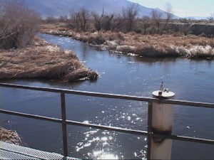Overflow of Owens River
