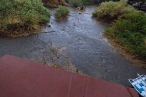 Flooded yard.