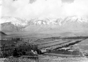 The Red Mountain Fruit Ranch, near Tinemah Creek, circa 1920. Photo courtesy the Eastern California Museum.