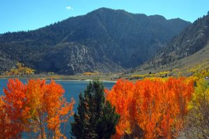 Rush Creek Photo by Alicia Vennos