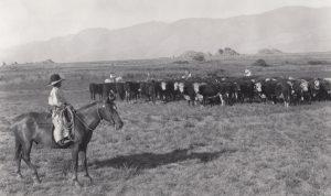 ram-947-young-johnny-lubken-lubken-ranch-lp