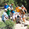At Eastern Sierra Land Trust's Crayons & Paint on July 29th, kids and their families are invited to play games, get creative, and explore nature.