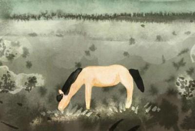Maja Lunde Kôň Przewalského
