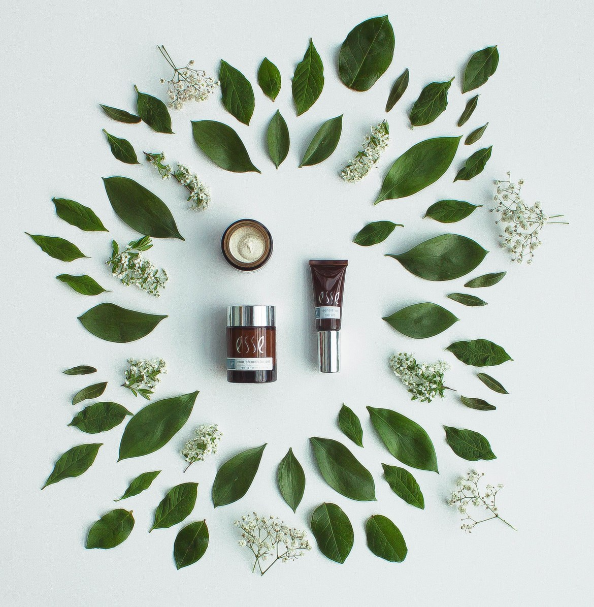 beauty product ingredients debunked