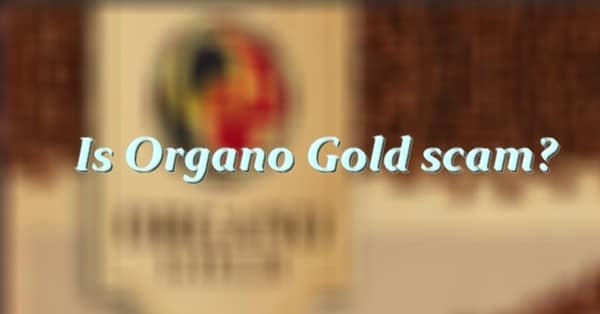 is organo gold scam