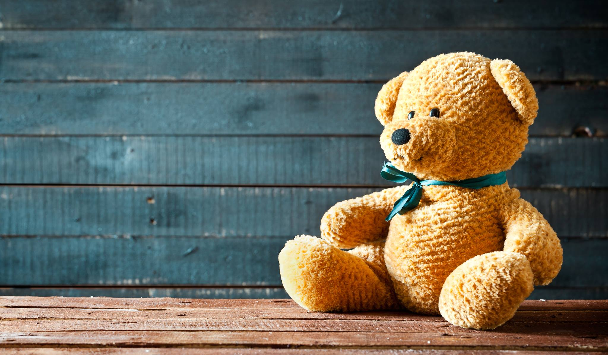 Teddy Bear Picnic Worksheet