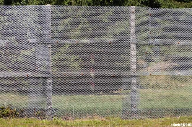 Sorge Innerdeutsche Grenze Inner Border Checkpoint
