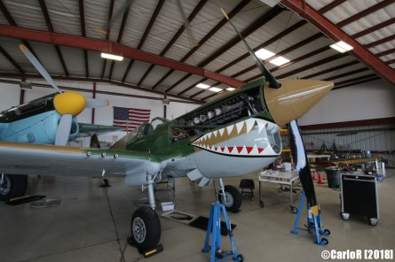 Cavanaugh Flight Museum Warhawk