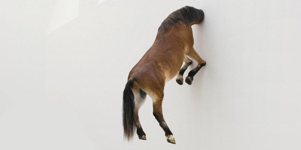 maurizio-cattelan-cheval