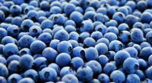la fruta llamada arándano da nombre a este color