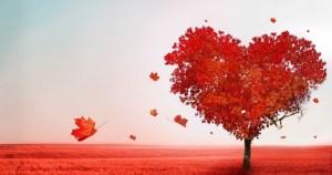 Poderosa amarração de São Cipriano para amor 【INFALÍVEL】