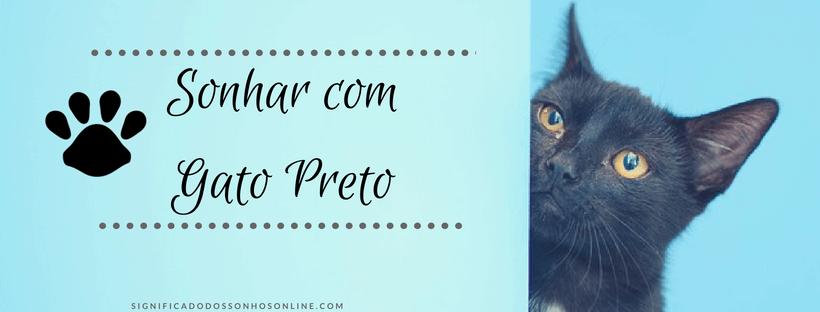 ▷ Sonhar com Gato Preto -【Interpretações Reveladoras】