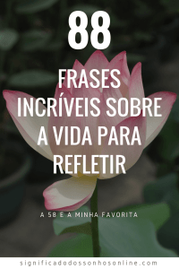 Frases De Indiretas Para As Recalcadas
