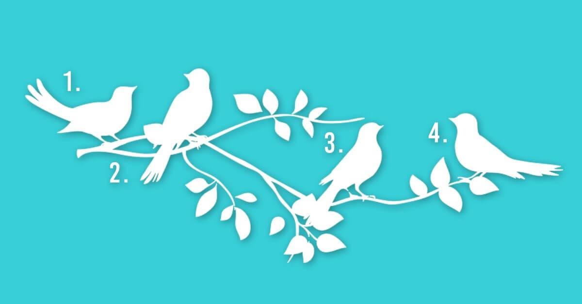 Escolha Um Pássaro e Descubra Qual é o Seu Propósito Na Vida