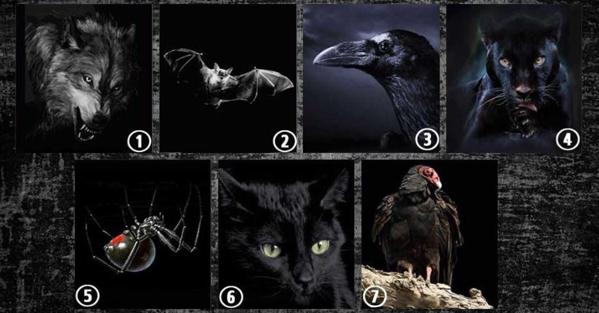 Qual Animal Você Escolhe? Esse Teste Mental Revela o Lado Oculto De Cada Pessoa