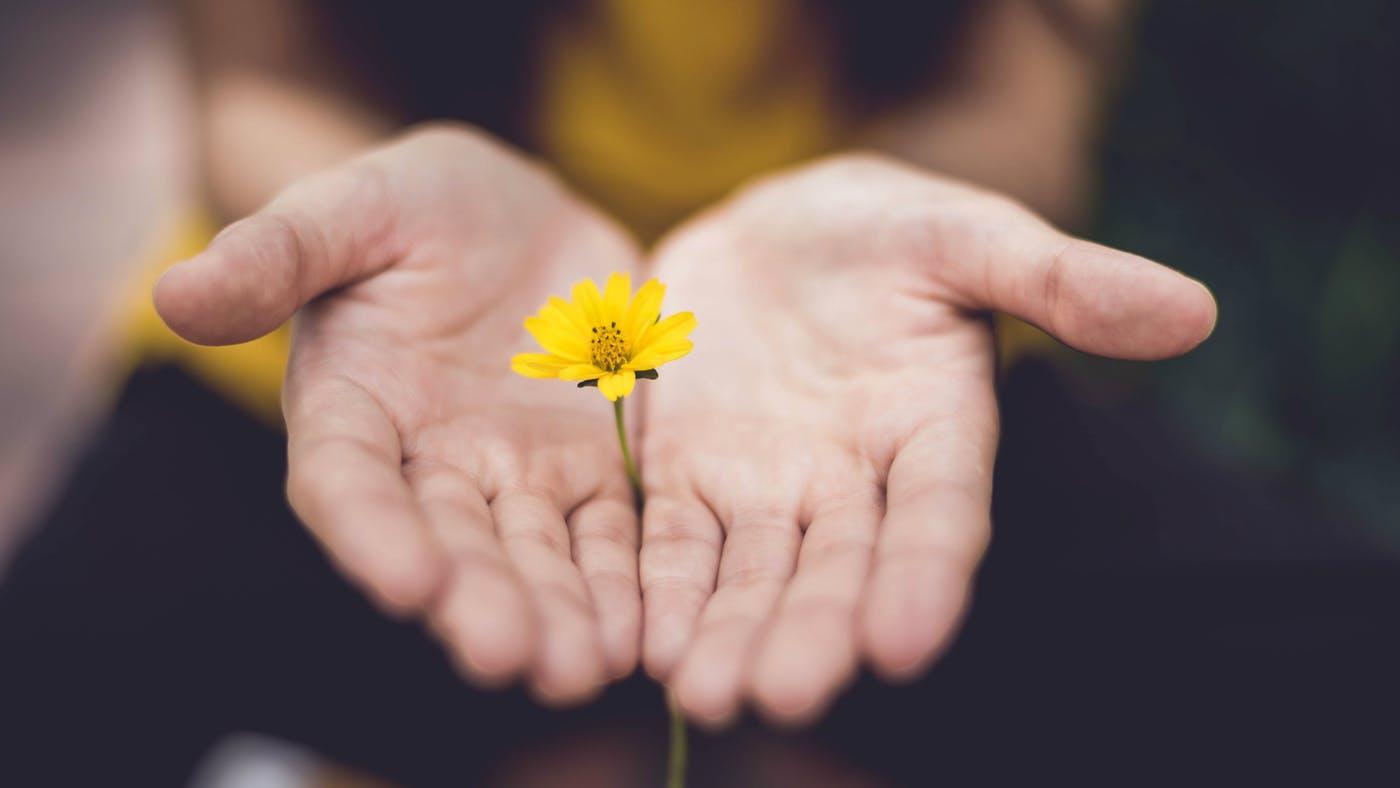 Salve Essas 10 Frases De Gratidão Para Repetir Sempre Que Se Sentir