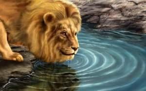 Tire Um Minuto e Leia Essa Breve Reflexão Que Vai Te Dar Força e Coragem