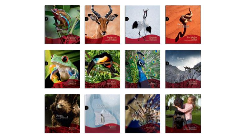 Reino Animal colección