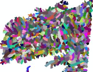 bassins versants individuels des tronçons hydrographiques