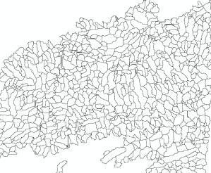 bassins versants des tronçons sous forme de polygones