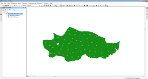affichage du parcellaire des forêts publiques