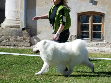 Põhjala koerte erinäitus, Konuvere mõisas