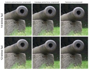 Cannon_collage