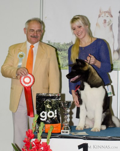 Puppy BIS, 1st place, American Akita
