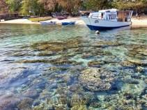 Vendy boat