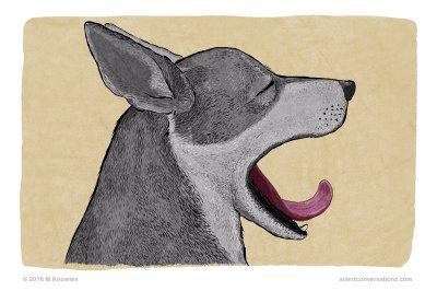Yawn – Dog Body Language