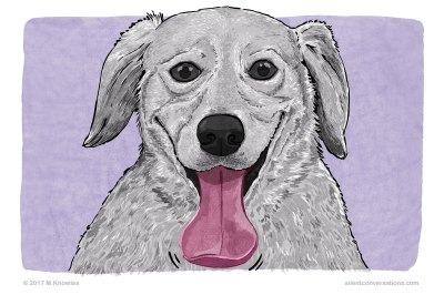 Spatulate tongue – Dog Body Language
