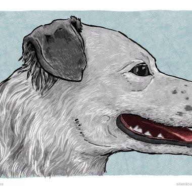 Panting – Dog Body Language