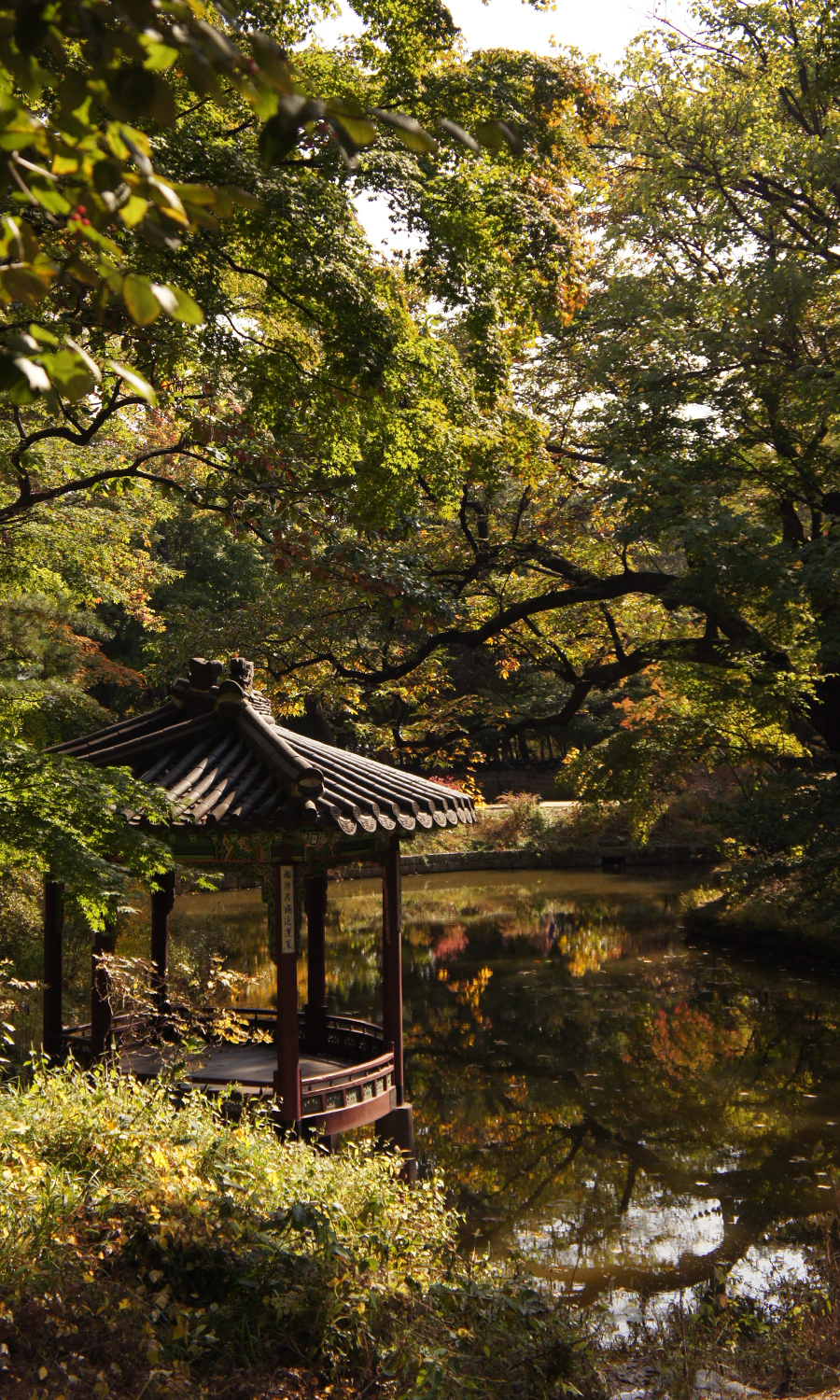 2014-seoul-korea-changdeokgung-palace-secret-garden-biwon-09