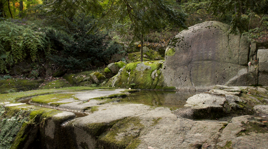 2014-seoul-korea-changdeokgung-palace-secret-garden-biwon-11